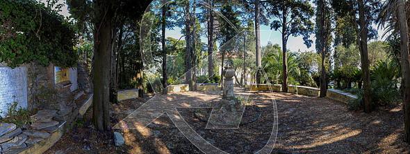 RAPALLO Villino in affitto con giardino e vista mare a S. Michele di Pagana