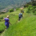 Cosa fare a Chiavari - il sentiero 5 torri di Leivi