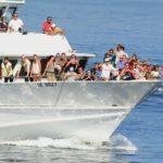 Cosa fare a Portofino - gite ed escursioni in battello