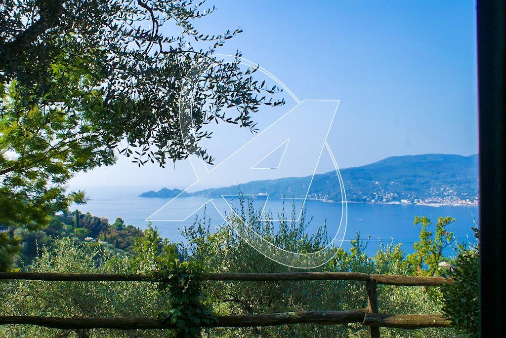 S. Ambrogio vendesi splendida villa con piscina e superba vista sul Golfo