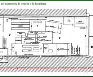 Sestri Levante: vendesi capannone in vendita con attività