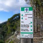 Cosa fare a Portofino - sentieri parco Portofino